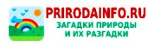 http://dl3.joxi.net/drive/2021/09/11/0048/3236/3157156/56/4c1ae357e8.jpg